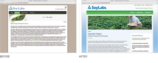 SoyLabs website